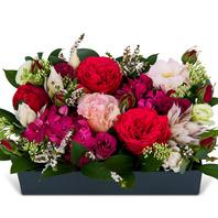 레드혼합꽃상자