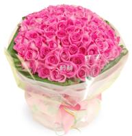 100송이 핑크장미꽃다발