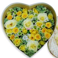노란꽃박스