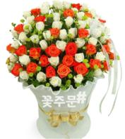 흰나비 투톤꽃바구니(100송이)