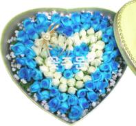 비누꽃 파란하트